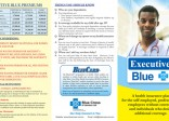 BCJL Executive Blue Brochure_500px